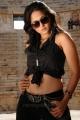 hot_anushka_shetty_new_pics_ragada_6911