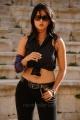 hot_anushka_shetty_new_pics_ragada_8312