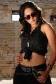 hot_anushka_shetty_new_pics_ragada_8384