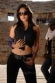 hot_anushka_shetty_new_pics_ragada_8665