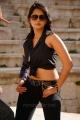 hot_anushka_shetty_new_pics_ragada_9681