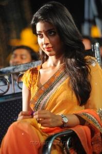 Actress Shriya Saran Saree Images @ Pavitra Audio Release
