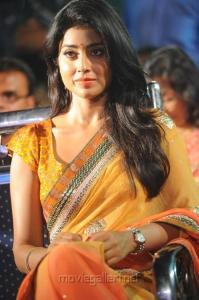 Actress Shriya Saran Saree Images @ Pavitra Movie Audio Release
