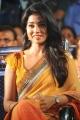Shriya Saran Dual Color Saree Images @ Pavitra Audio Release