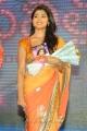 Actress Shriya Saran Saree Images @ Pavithra Movie Audio Release