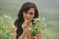 Actress Amy Jackson Hot Stills in I Movie