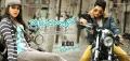 Catherine Tresa, Allu Arjun in Iddarammayilatho Movie Audio Released Wallpapers