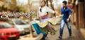 Amala Paul, Allu Arjun in Iddarammayilatho Movie Audio Released Wallpapers