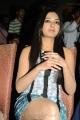 Actress Catherine Tresa at Iddarammayilatho Hexa Platinum Disc Function Photos