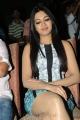 Actress Catherine Tresa at Iddarammayilatho Platinum Disc Function Photos