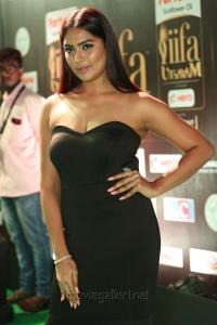 Actress Samyukta Hornad @ IIFA Utsavam 2017 Green Carpet (Day 2) Images