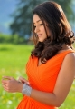 Actress Ileana D'Cruz Latest Stills in Devudu Chesina Manushulu