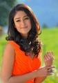 Actress Ileana D'Cruz Latest Photos in DCM