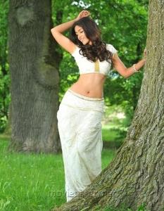 Devudu Chesina Manushulu Ileana Hot Photos