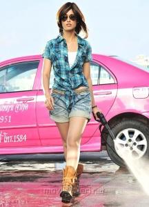 Ileana Hot Photos in DCM