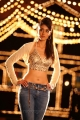 Telugu Actress Ileana Hot Pics in Julayi