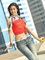 Ileana Hot Photos in Julayi Movie