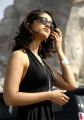 Ileana Hot Pictures in Kick Movie