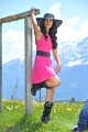 Actress Ileana Hot Pics in Pink Dress