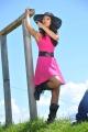 Devudu Chesina Manushulu Ileana Hot in Pink Dress Pics