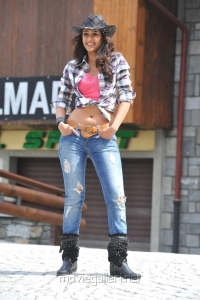 Actress Ileana in Checked Shirt & Jeans Hot Photos