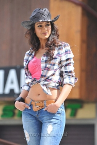 DCM Heroine Ileana New Hot Pictures in Checked Shirt