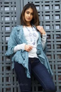 Ileana Nenu Naa Rakshasi Photos Stills Pics
