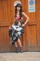 Actress Ileana Latest Unseen Hot Pics