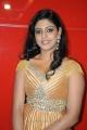 Actress Iniya New Hot Images at Ammavin Kaipesi Audio Launch