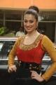 Actress Lakshmi Rai @ Irumbu Kuthirai Movie Press Meet Stills
