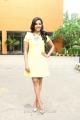 Actress Priya Anand @ Irumbu Kuthirai Movie Press Meet Stills
