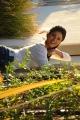 Actress Archana Gupta in Iruvar Ullam Tamil Movie Stills