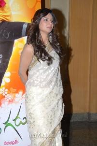 Isha Chawla in Saree Stills