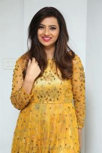 Actress Isha Chawla Photos in Golden Dress