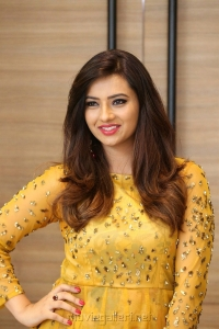 Beautiful Actress Isha Chawla Golden Dress Photos
