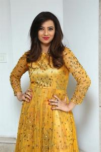 Actress Isha Chawla New Photos in Golden Dress