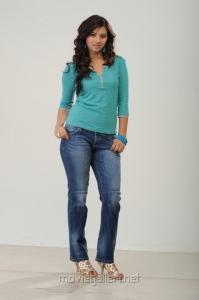 Telugu Actress Isha Chawla in Jeans Photoshoot Pics