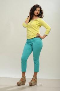 Actress Isha Chawla in Jeans Photoshoot Pics