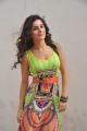 Telugu Actress Isha Talwar Photos in Sleeveless Dress