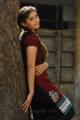 Actress Surabhi in Ivan Vera Mathiri Movie Stills