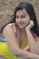 Actress Varsha K Pandey in Ivan Yaaro Movie Stills