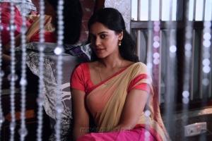 Actress Bindu Madhavi in Jackson Durai Movie Photos