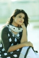 Actress Jai Quehaeni Stills in CSK Movie