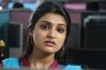 CSK Movie Actress Jai Quehaeni Stills