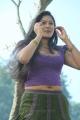 Jakkamma Meghana Raj Stills
