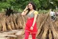 Paagan Movie Actress Janani Iyer New Pics
