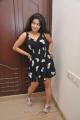 Janavi Hot in Black Dress Stills