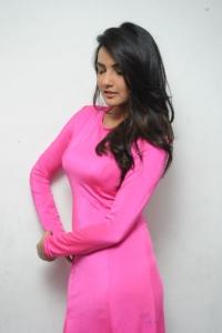 Actress Jasmin Bhasin Photos @ Ladies and Gentleman Audio Release