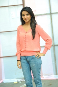 Actress Jasmine Bhasin Latest Stills at Dilunnodu Press Meet