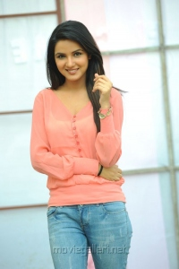 Actress Jasmin Bhasin Latest Stills at Dilunnodu Press Meet